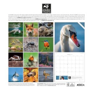 calendar_twt_2017_grid_and_eproof3-page-028__85829_1461758083_1280_1280