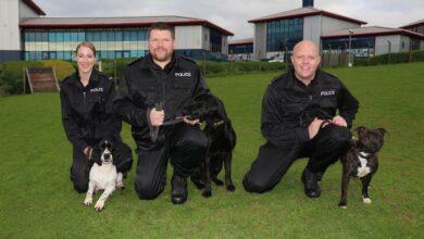 Graduate Police Dogs